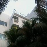 Shore Club hotel (along Collins Avenue)