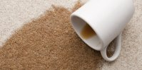 How to remove coffee stains from your carpets  Fresher