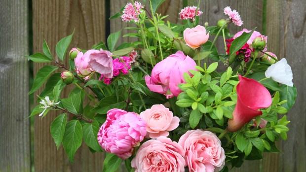 pink_arrangement 068