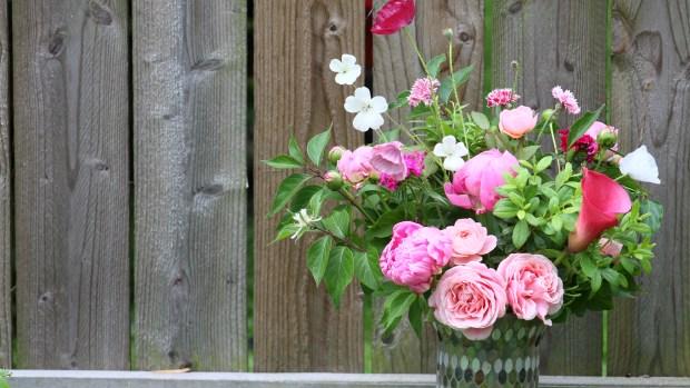 pink_arrangement 079