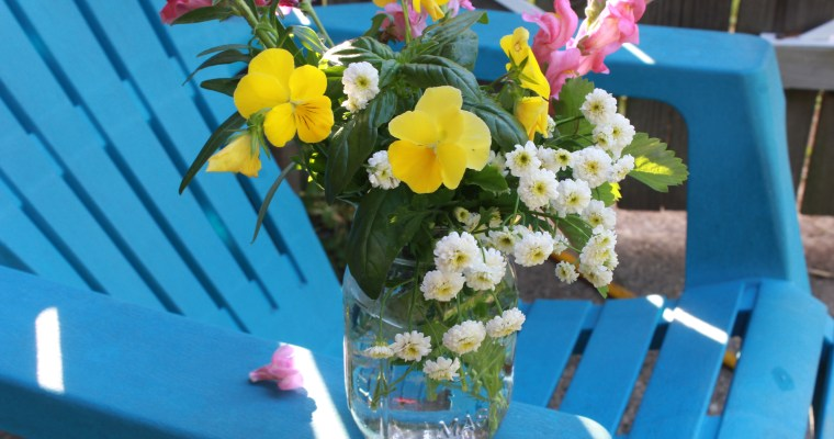 Cut Flower Garden Jar Arrangement – Snapdragons and Pansies – Growing Flowers from Seed