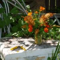 Simple Annual Flower Arrangement from the Garden - Cut Flowers