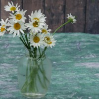 Flower Arrangement: Statice and Daisies