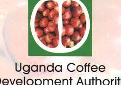 Field Jobs In Uganda