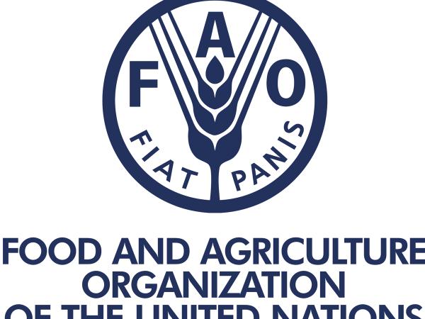 UN FAO Uganda Jobs 2021