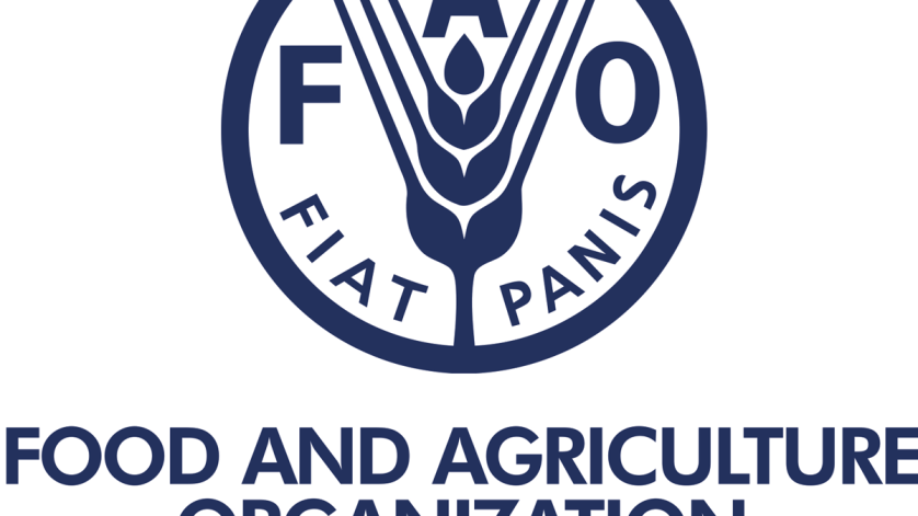 FAO Uganda Jobs 2021