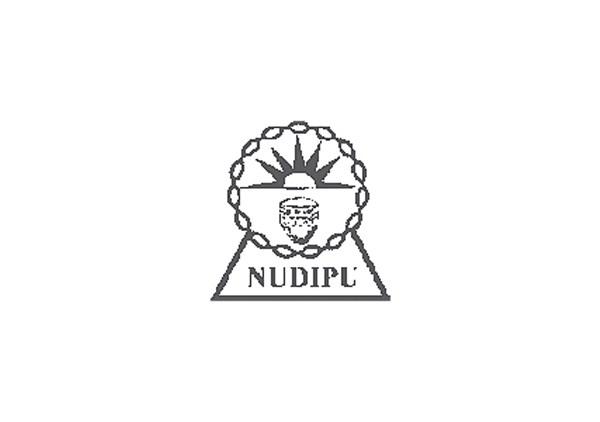 NUDIPU Jobs 2021