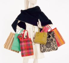 cashin-coach-bags