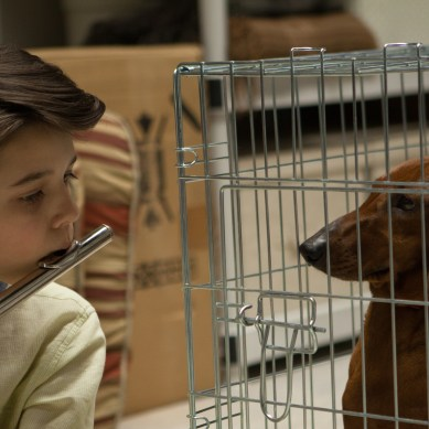 'WIENER-DOG,' an unforgettable passing narrative as told by filmmaker Todd Solondz