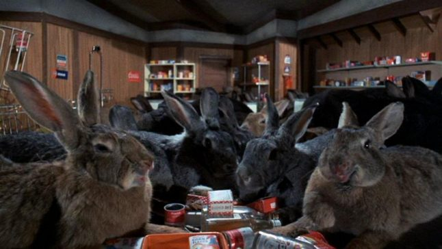 Fresh on Blu-ray: 'NIGHT OF THE LEPUS' – a killer rabbit movie to bite into