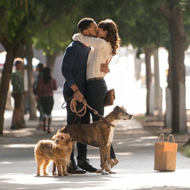 "Movie Review: 'DOG DAYS' is a ""bone""-a fide sensation"