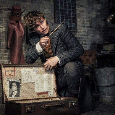 Fresh on 4K: 'FANTASTIC BEASTS: THE CRIMES OF GRINDELWALD' unleashes a magical high-quality presentation