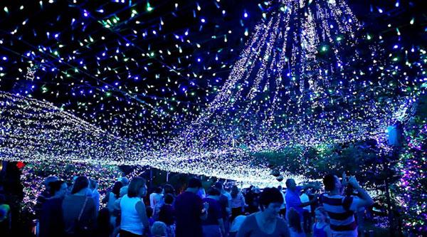 Het wereldrecord kerstverlichting  Freshgadgetsnl
