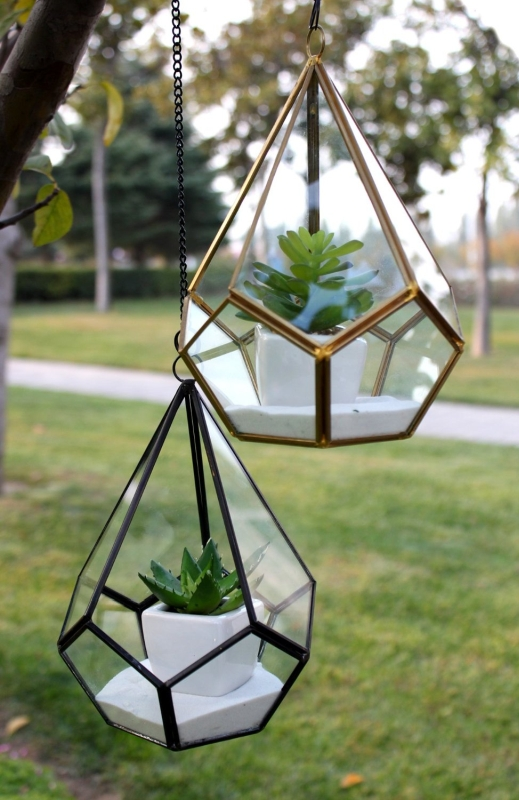 Triangular Geometric Glass Pannel Terrarium  Fresh Garden Decor