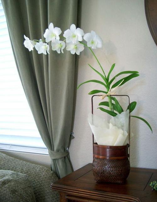 Dekoration mit Orchideen  14 exklusive erfrischende Ideen
