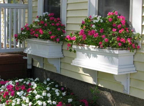 Blumenksten auf der Fensterbank drauen  sichere und