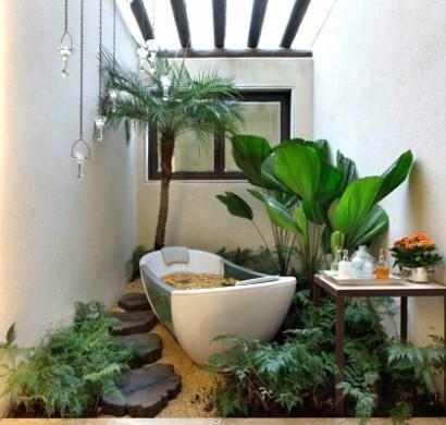 Pflanzen im Badezimmer  die besten Vorschlge fr Sie