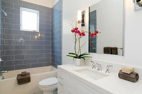 Pflanze Badezimmer Feuchtigkeit
