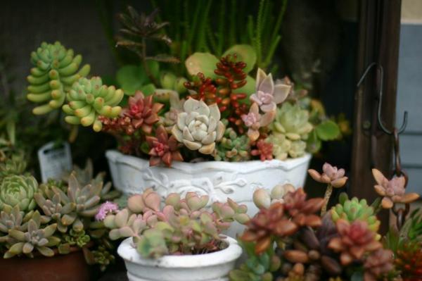 60 Schne Gartenideen Garten Bilder Fr Gartendekorationen