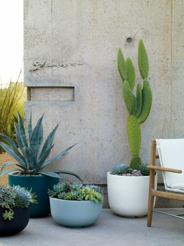 Zimmergrnpflanzen Bilder und inspirierende Deko Ideen