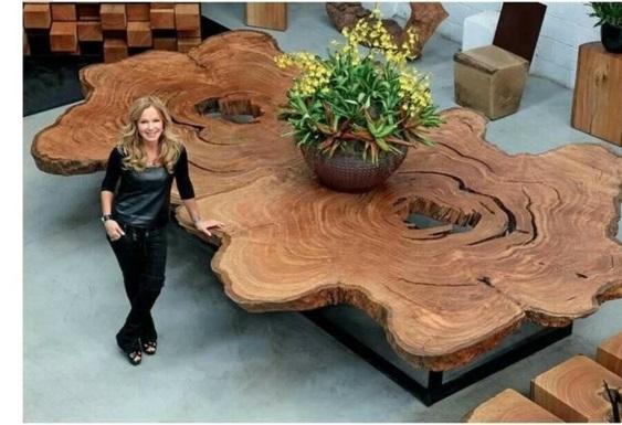 60 Treibholz Tisch Modelle und hinreiende Objekte aus der Natur