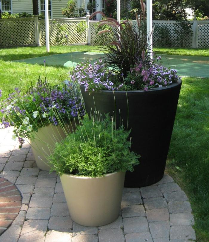 sichtschutz mit pflanzkubel | sichtschutz, Gartengerate ideen