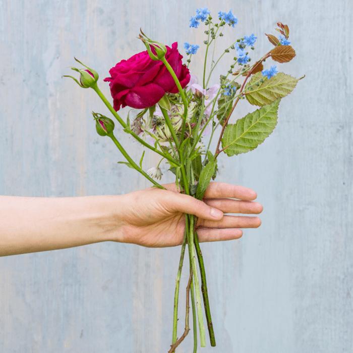 Einen Blumenstrau selber binden  so geht es Schritt fr