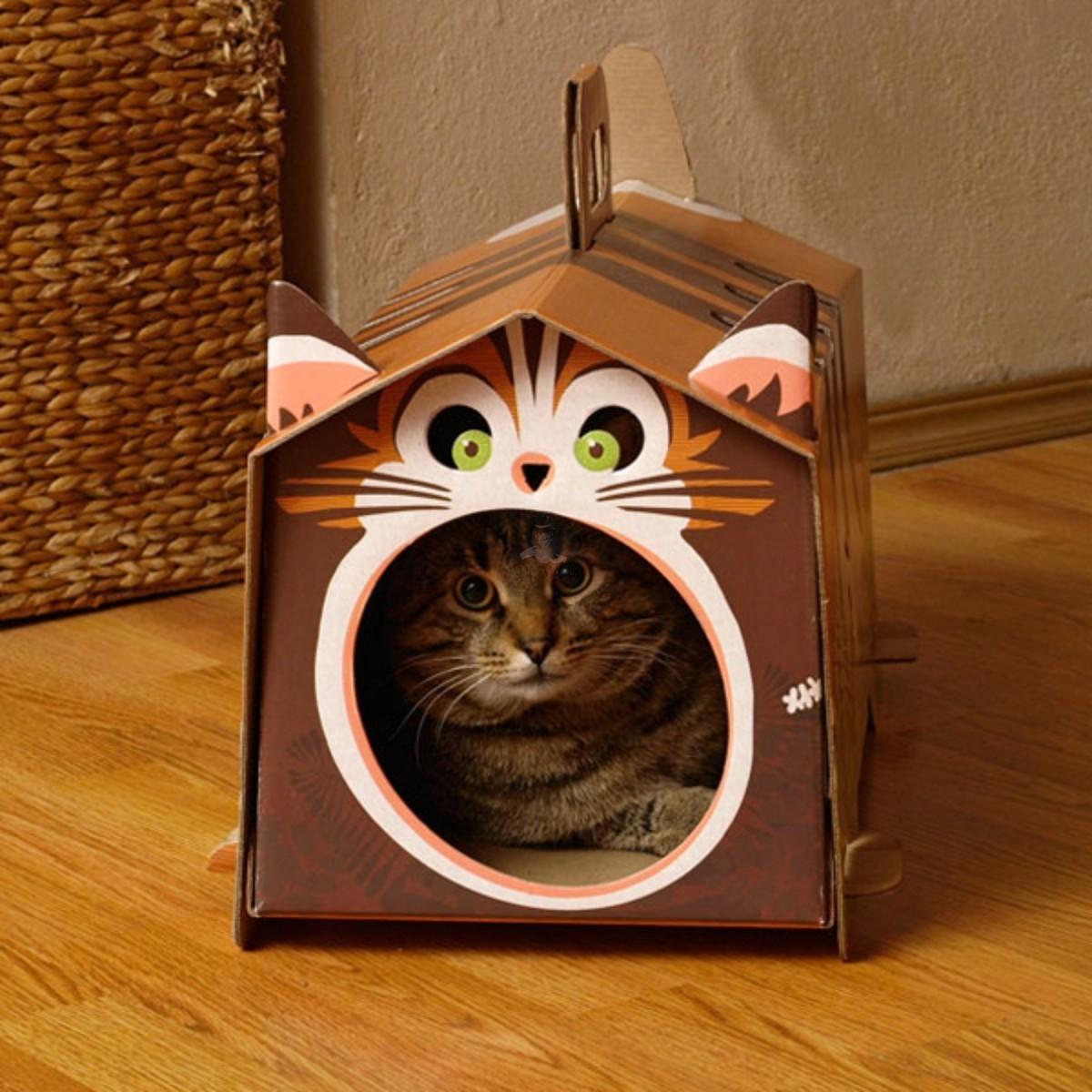 Katzenhaus Aus Pappe Selber Bauen Katzen Balkon Selber Bauen Good
