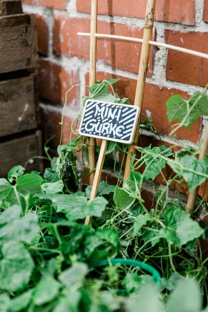 Gartendekoration selber machen 3 frische Dekoideen mit