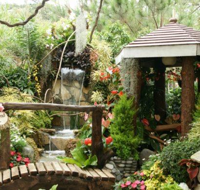 Jardin feng shui  conseils et ides pour votre zone zen