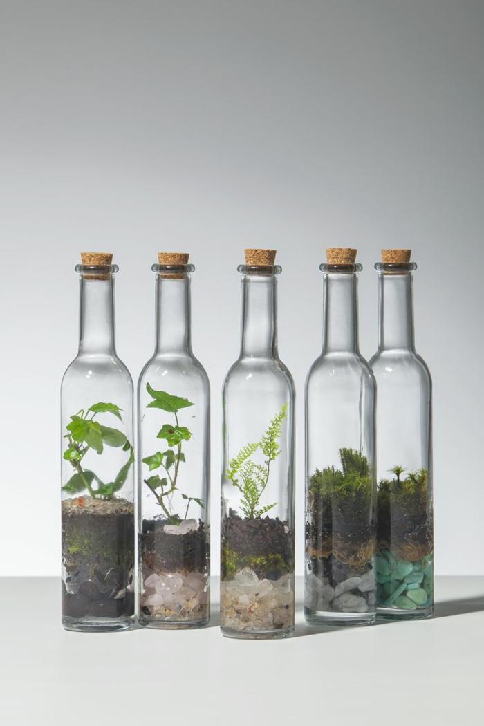 DIY Faire son propre terrarium plante pour dcorer la maison