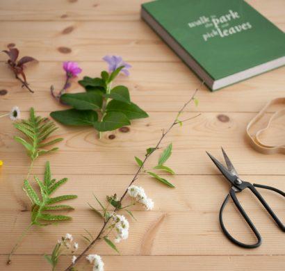 Comment faire un herbier  ides faciles pour un objet dco original