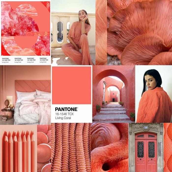 Living coral  la couleur de lanne 2019 de Pantone