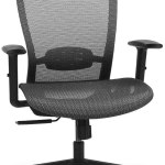 FlexiSpot OC3B Ergonomic Executive Office Chair Amazon Shopping in 2020
