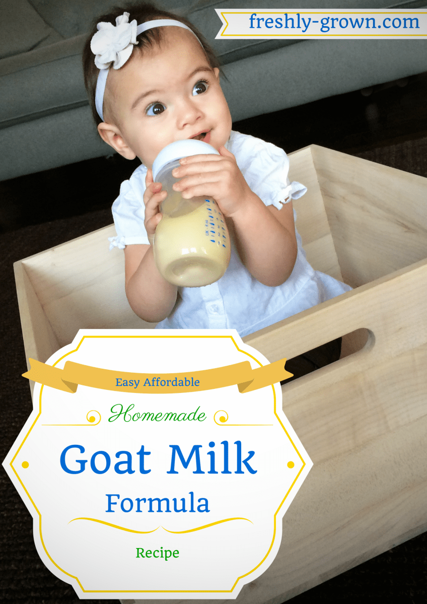 My Baby Thrived On This Affordable Homemade Goat Milk
