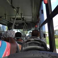 On the road with public transportation