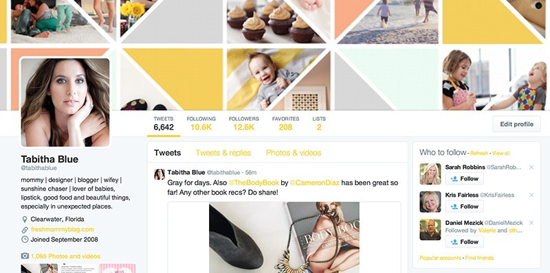 TWITTER profile example for better blogging