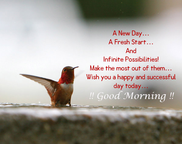 20+ Beautiful Good Morning Have A Nice Day Wallpapers