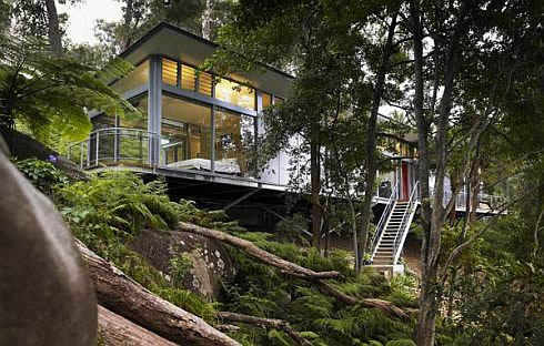 luxury tree house 2 Contemporary Glass House in Sydney, Australia