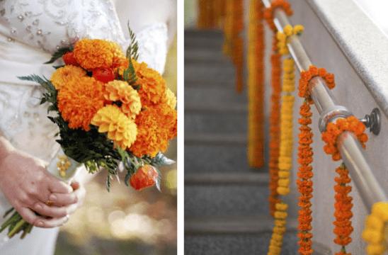 Ringelblume  fantastische und kreative Blumendekoration  fresHouse