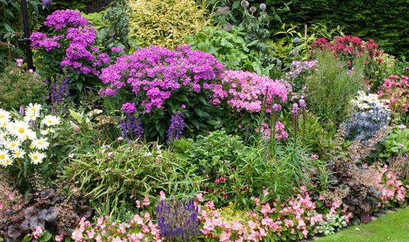 Victoria Falls Wallpapers High Resolution Cottage Garden Eine Der Beliebtesten Gartenformen