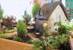 Miniature Gardening With Janit Calvo