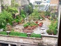 Roof Fairy Garden