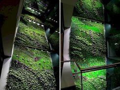 Beautiful Indoor Vertical Garden