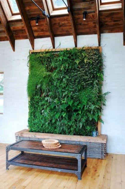 DIY Indoor Living Walls Vertical Gardens