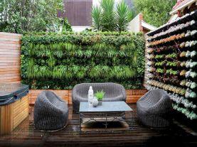 DIY Vertical Indoor Garden Walls