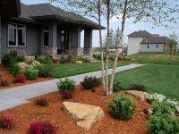 Front Entrance Landscaping (Front Entrance Landscaping