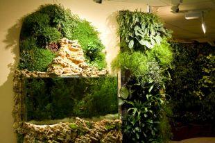 Indoor Vertical Garden Design Idea
