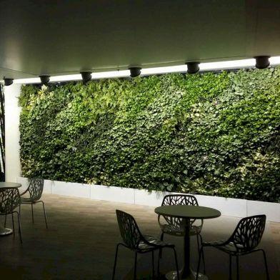 Indoor Vertical Wall Garden Ideas