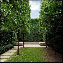 Minimalist Garden Landscape Designs